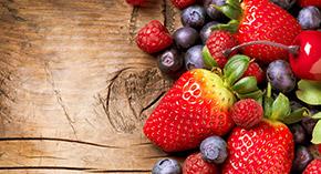 Malina, truskawka, porzeczki czerwona i czarna, wiśnie, agrest, śliwka, aronia, jeżyny, jagoda i inne