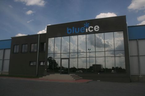 Blue Ice Sp. z o.o. Producent mrożonek
