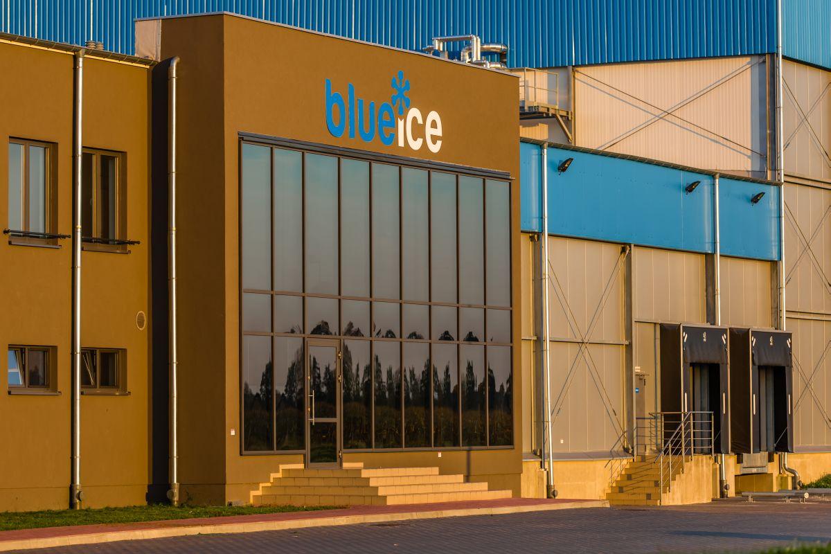 Blue Ice Sp. z o.o. Producent mrożonek widok