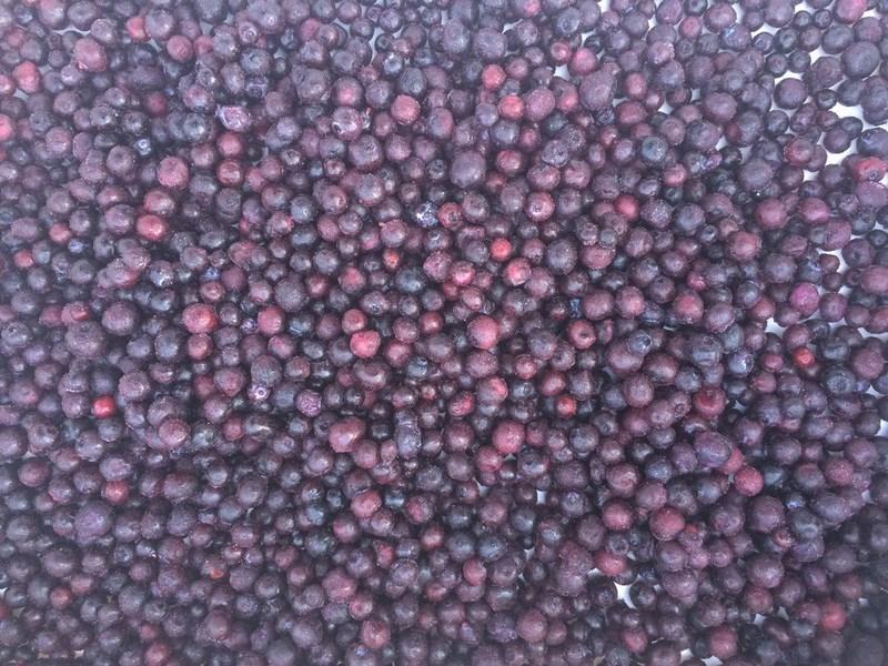 mrożona jagoda